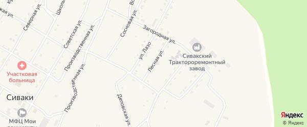 Лесная улица на карте поселка Сиваки Амурской области с номерами домов
