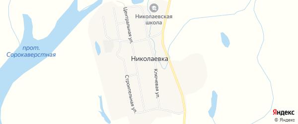Карта села Николаевки в Амурской области с улицами и номерами домов