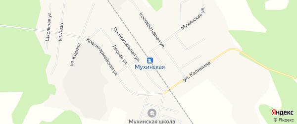 Карта села Мухино в Амурской области с улицами и номерами домов