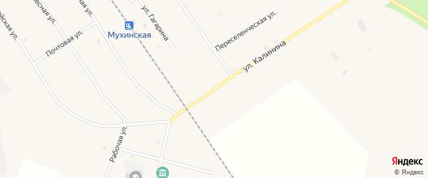 Улица Калинина на карте села Мухино с номерами домов