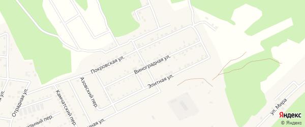 Виноградная улица на карте села Чигири Амурской области с номерами домов