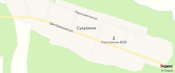 Центральная улица на карте села Сукромли Амурской области с номерами домов