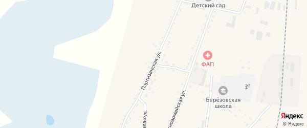 Партизанская улица на карте села Березовки Амурской области с номерами домов