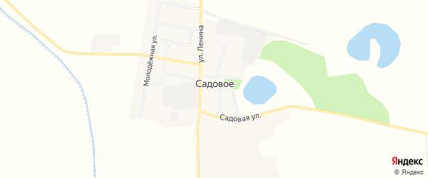 Карта Садового села в Амурской области с улицами и номерами домов