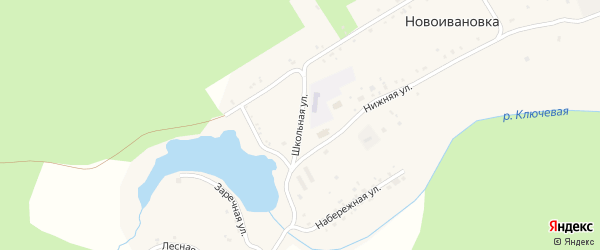 Школьная улица на карте села Новоивановки Амурской области с номерами домов