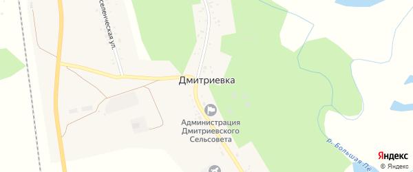 Восточная улица на карте села Дмитриевки с номерами домов