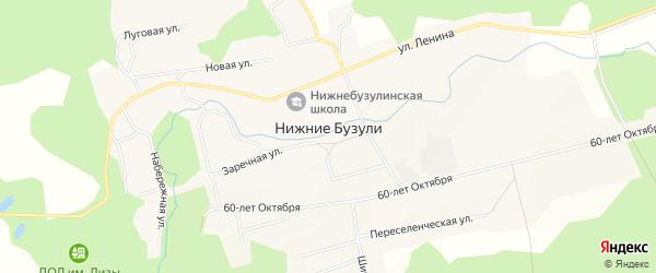 Карта села Нижние Бузули в Амурской области с улицами и номерами домов