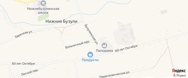 Бузулинская улица на карте села Нижние Бузули Амурской области с номерами домов