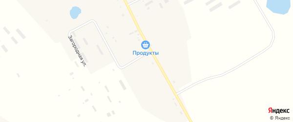 Новая улица на карте села Томичи с номерами домов