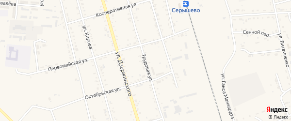 Трудовая улица на карте поселка Серышево Амурской области с номерами домов