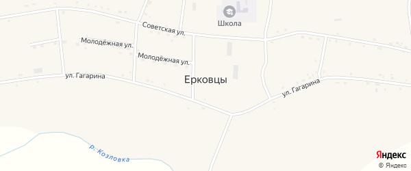 Северная улица на карте села Ерковцы Амурской области с номерами домов