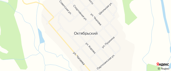 Карта села Октябрьского в Амурской области с улицами и номерами домов