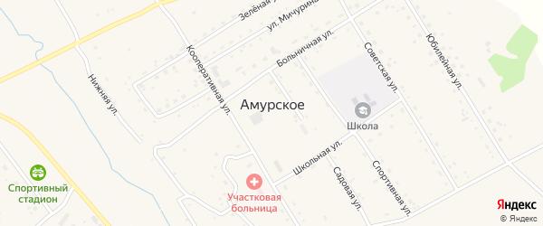 Садовая улица на карте Амурского села с номерами домов