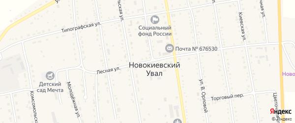 Лесная улица на карте села Новокиевского Увала Амурской области с номерами домов