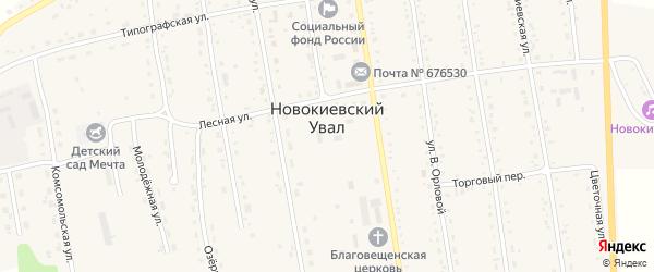 Торговый переулок на карте села Новокиевского Увала Амурской области с номерами домов
