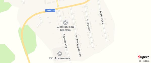Улица Мелиораторов на карте села Новокиевского Увала Амурской области с номерами домов