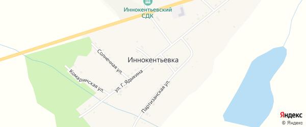 Центральная улица на карте села Иннокентьевки Амурской области с номерами домов