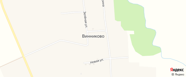 Зеленая улица на карте села Винниково Амурской области с номерами домов
