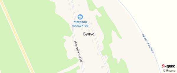 Лесная улица на карте села Булуса Якутии с номерами домов