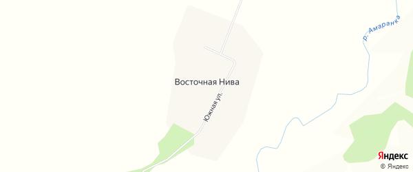 Карта села Восточной Нивы в Амурской области с улицами и номерами домов