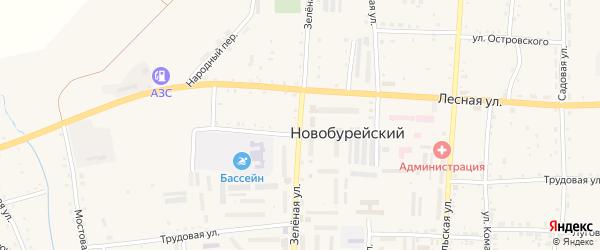 Зеленая улица на карте Новобурейского поселка с номерами домов