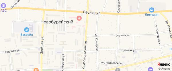 Трудовая улица на карте Новобурейского поселка Амурской области с номерами домов