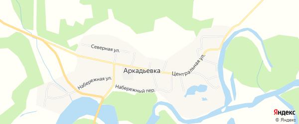 Карта села Аркадьевки в Амурской области с улицами и номерами домов