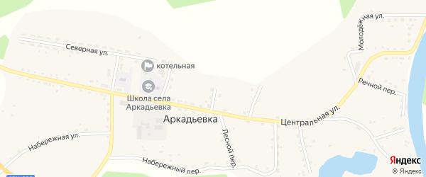 Садовый переулок на карте села Аркадьевки Амурской области с номерами домов