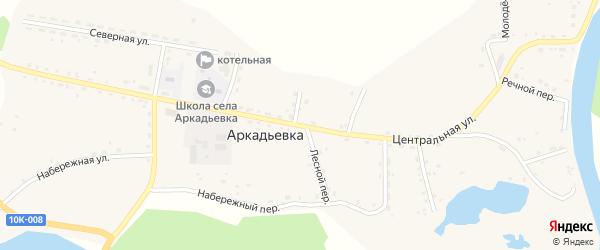 Центральная улица на карте села Аркадьевки Амурской области с номерами домов