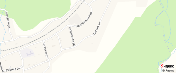 Лесной переулок на карте села Ядрино с номерами домов