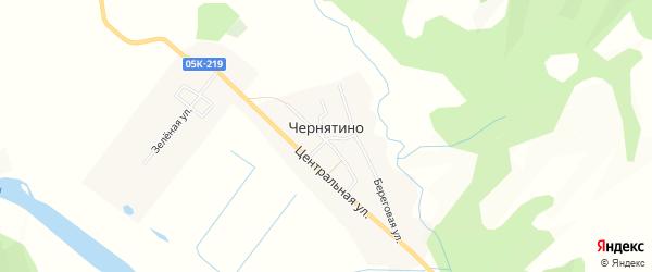 Карта села Чернятино в Приморском крае с улицами и номерами домов