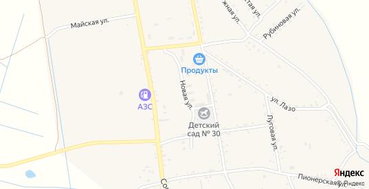 Новая улица в селе Борисовка в Уссурийске с номерами домов на карте. Спутник и схема онлайн