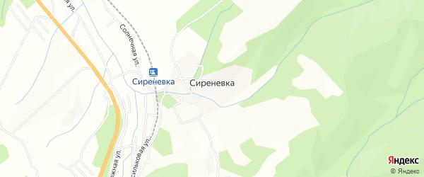 Карта поселка Сиреневки в Приморском крае с улицами и номерами домов