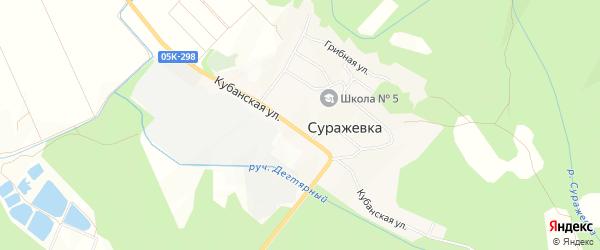 Карта села Суражевки города Артема в Приморском крае с улицами и номерами домов