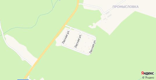 Лесная улица в Фокино с номерами домов на карте. Спутник и схема онлайн