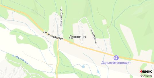 Карта села Душкино в Находке с улицами, домами и почтовыми отделениями со спутника онлайн
