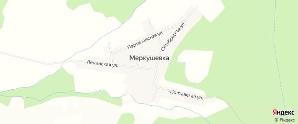Карта села Меркушевки в Приморском крае с улицами и номерами домов