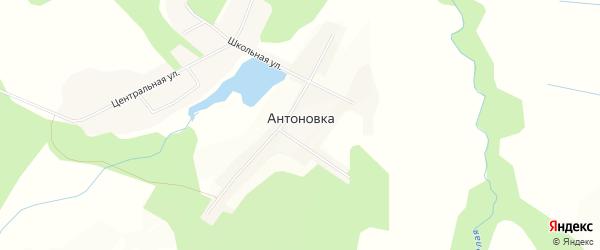 Карта села Антоновки в Приморском крае с улицами и номерами домов