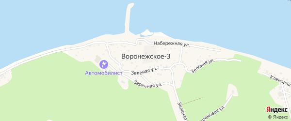 Тенистая улица на карте села Воронежского-3 Хабаровского края с номерами домов