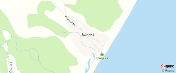 Карта села Единки в Приморском крае с улицами и номерами домов