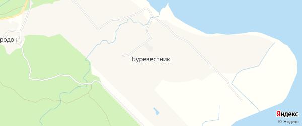 Карта села Буревестника в Сахалинской области с улицами и номерами домов