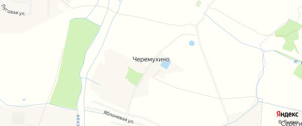 Карта поселка Черемухино в Калининградской области с улицами и номерами домов