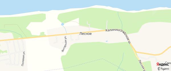 Карта поселка Лесного в Калининградской области с улицами и номерами домов