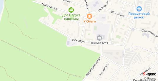 Новая улица в Светлогорске с номерами домов на карте. Спутник и схема онлайн
