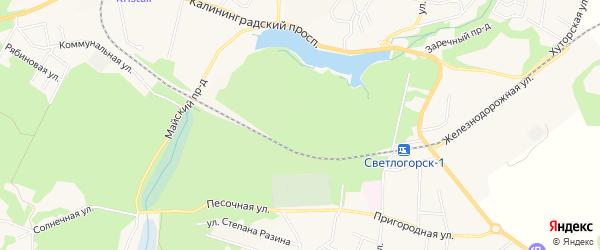 Карта поселка Молодогвардейского в Калининградской области с улицами и номерами домов