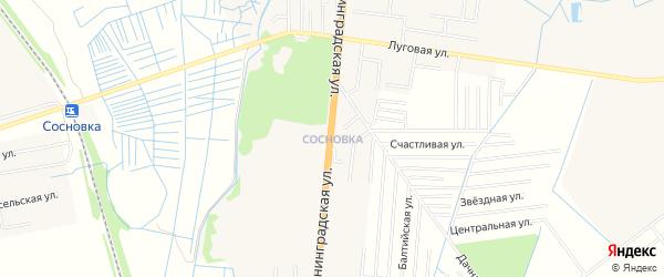 Карта поселка Сосновки города Зеленоградска в Калининградской области с улицами и номерами домов