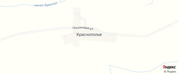 Поселковая улица на карте поселка Краснополья Калининградской области с номерами домов