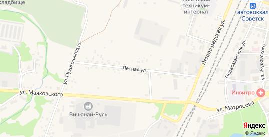 Лесная улица в Советске с номерами домов на карте. Спутник и схема онлайн