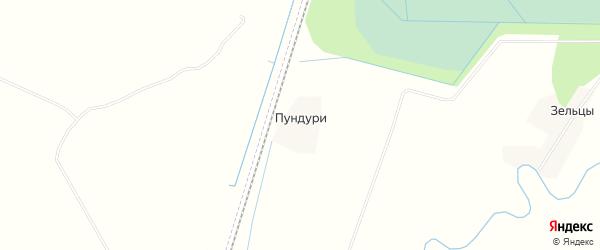Карта деревни Пундури в Псковской области с улицами и номерами домов