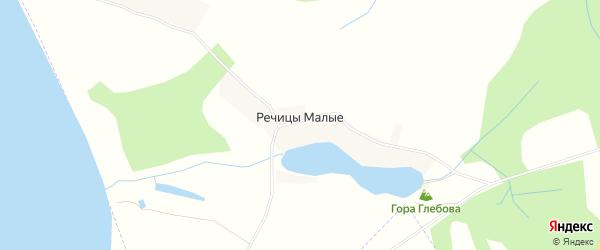 Карта деревни Речицы Малые в Псковской области с улицами и номерами домов